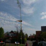 Dirk Fornahl stellt den Maibaum im Dorf mit auf